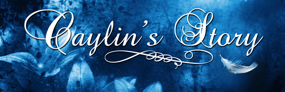 Caylins Story Banner